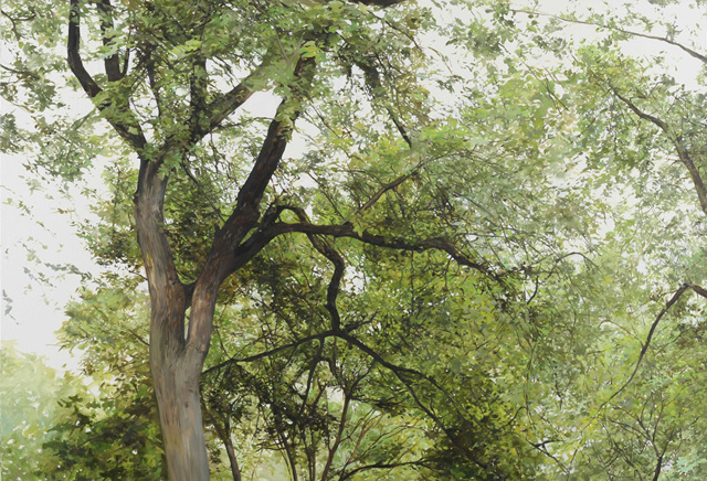 길가의 나무들 1_ Looking up on a road 1, 린넨에 유화_oil on linen, 89x130cm, 2014