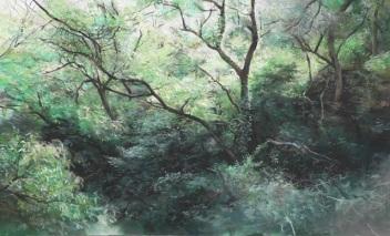숲에서 보다_Lookin up in the forest, 종이에 파스텔_pastel on paper, 47x76cm, 2014