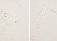 Hwang Yunju_숨어있는 꽃_바이칼, 러시아_50x35.5cm(ea) 2014
