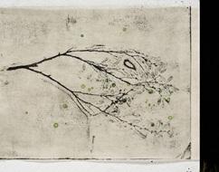 Hwang Yunju_in the australian bush(부분)_from miriam_emboss_etching_digital print_25x33cm(ea)__2008