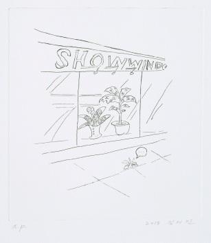 Show Window_etching_40x35cm_2013